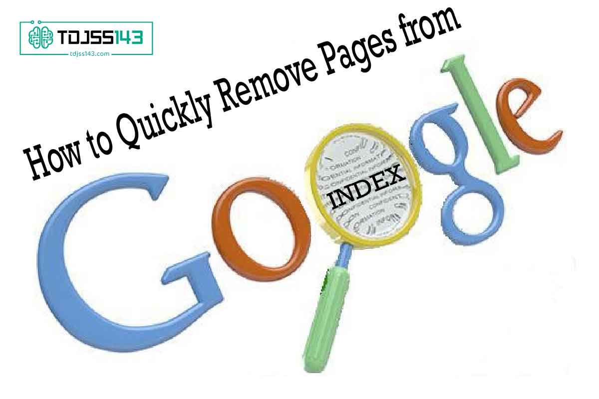 How to Quickly Remove Pages from Google's Index and Lift a